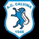 Calvina Sport SSDARL